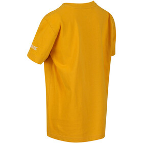 Regatta Bosley III Camiseta Niños, amarillo